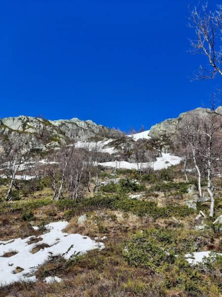 Returen på vei ned fra Skurvefjell vest. Foto: Lisa Kvålshaugen Bjærum