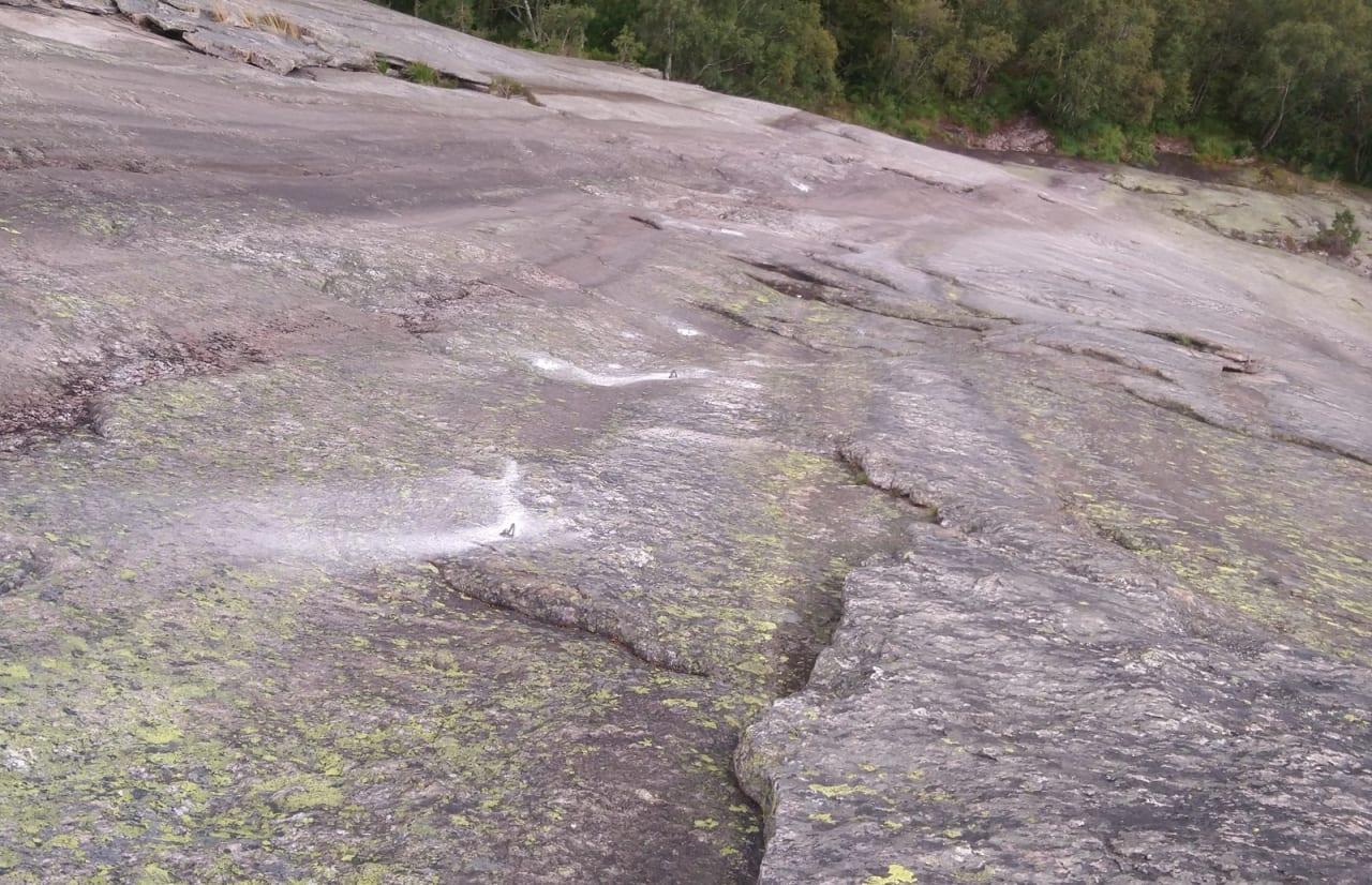 Rebolting på Hægefjell. Foto: Thor Inge Hansen