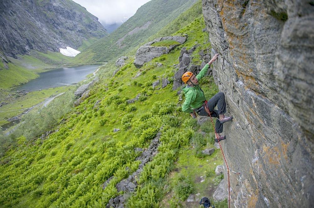 Vårkåt. Foto: Olav Standal Tangen