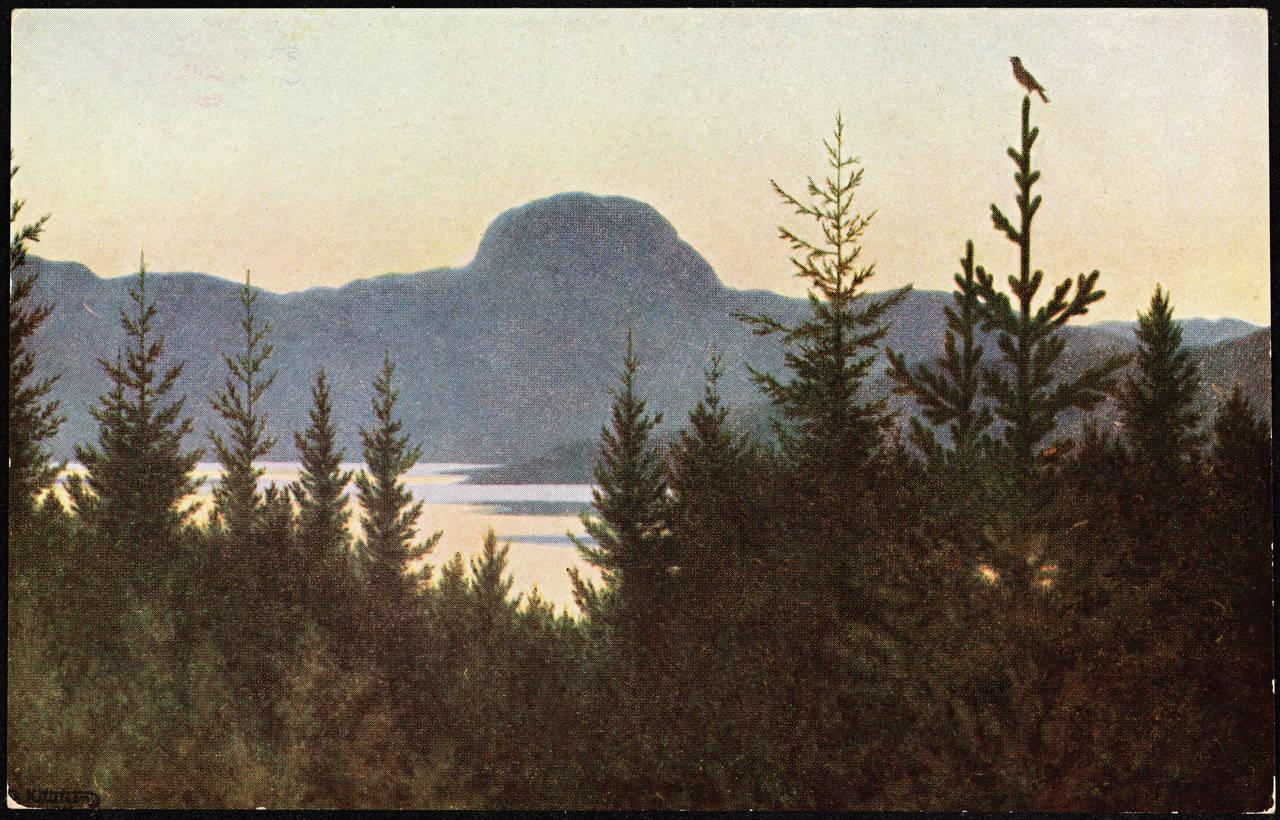 """Maleriet """"Andersnatten"""" av Theodor Kittelsen er nå solgt for hele 14 millioner."""